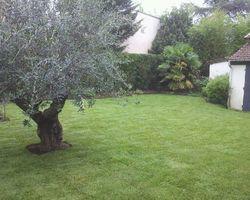 Vert-Tige - Saint-Maur-des-Fossés - Quelques exemples de prestations